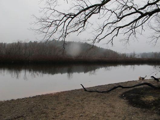 Mist cloud