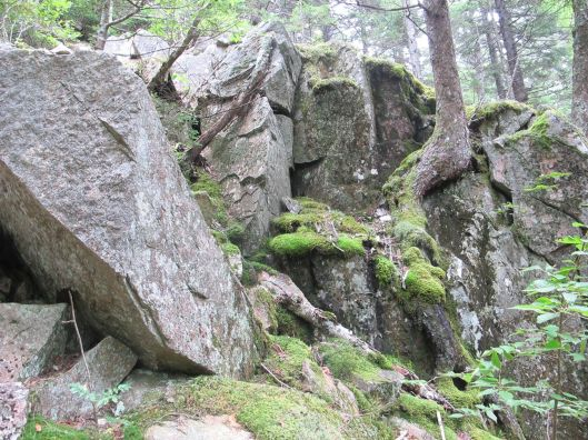 mossyrocks