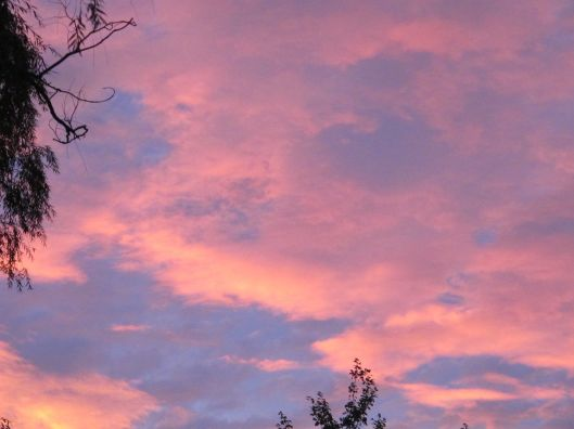 PinkClouds 1