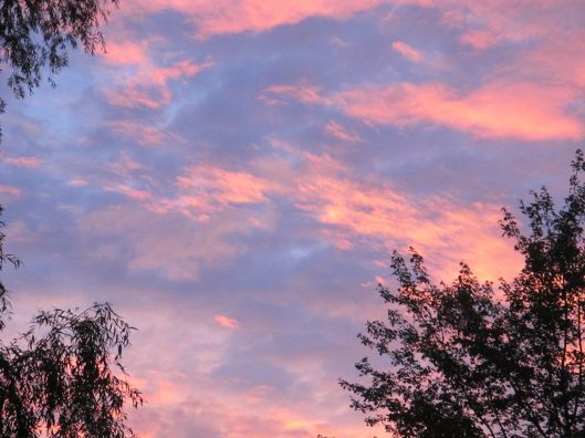 PinkClouds3
