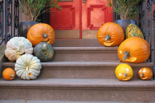 NYC Pumpkins