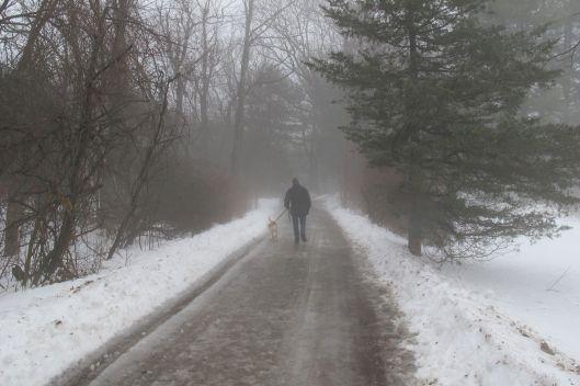 cloudy walk 1