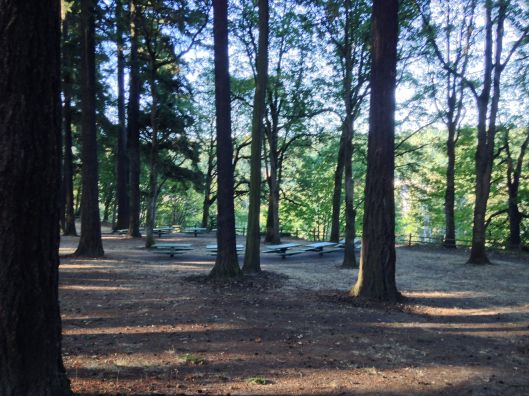 Sellwood_Park